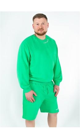 Джемпер муж. Alexis зеленый