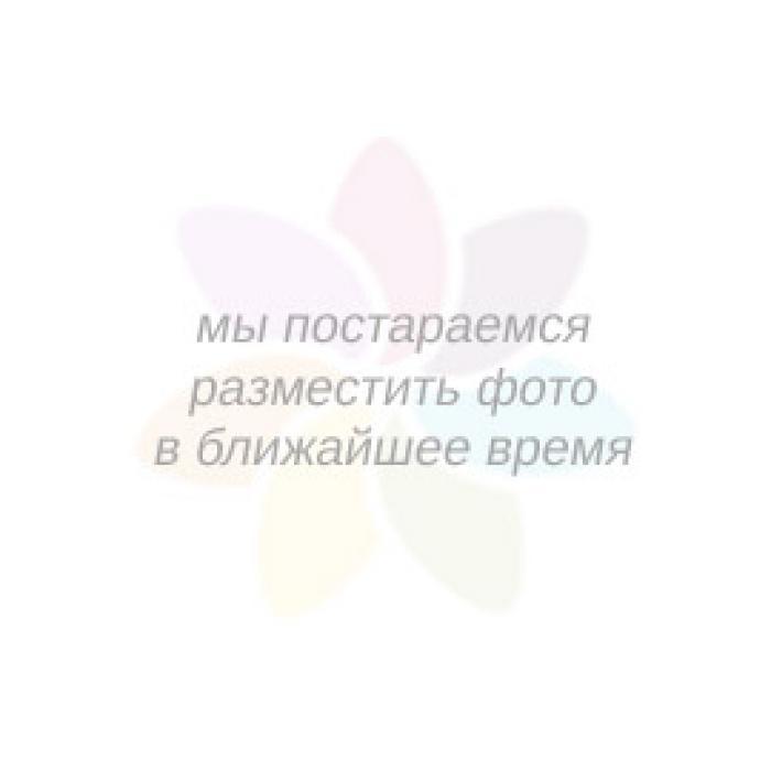 INDEFINI_TDJ9290 Шорты